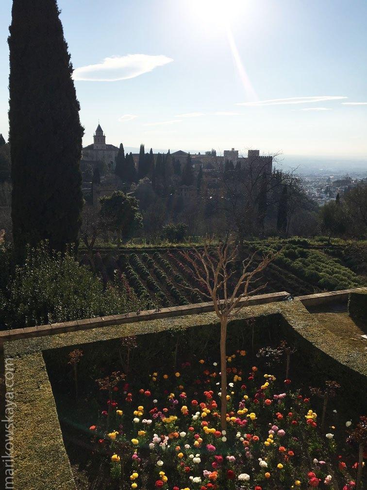 granada - la alhambra 8
