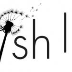 Wish List   Black Friday y Navidad 2016
